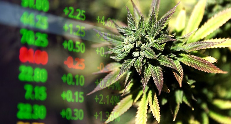 Beleggen in marihuana: 5 penny stock aandelen in 2020