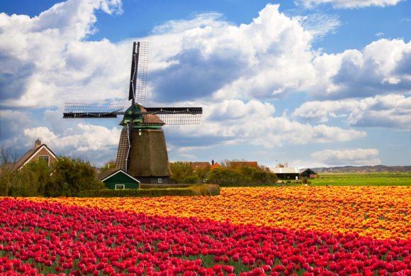 4 Nederlandse penny stocks die iedereen kent!